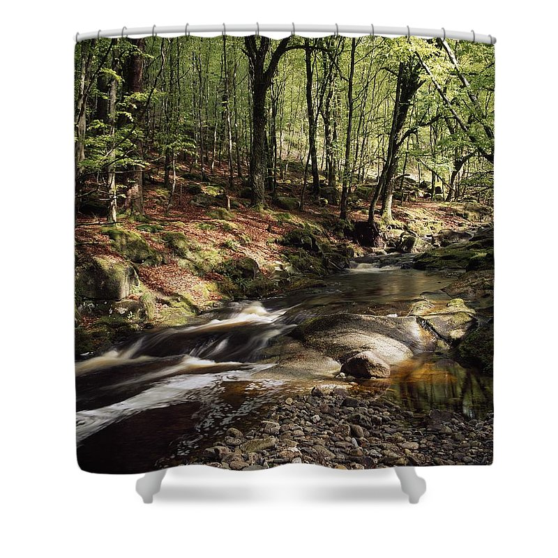 Irish Shower Curtain featuring the photograph Creek In Woods, Cloughleagh, County by The Irish Image Collection