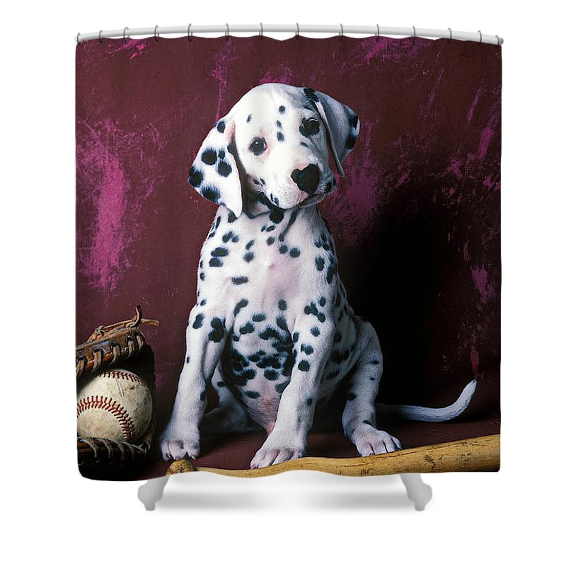 Dalmatian Puppies Shower Curtain Featuring The Photograph Puppy With Baseball By Garry Gay
