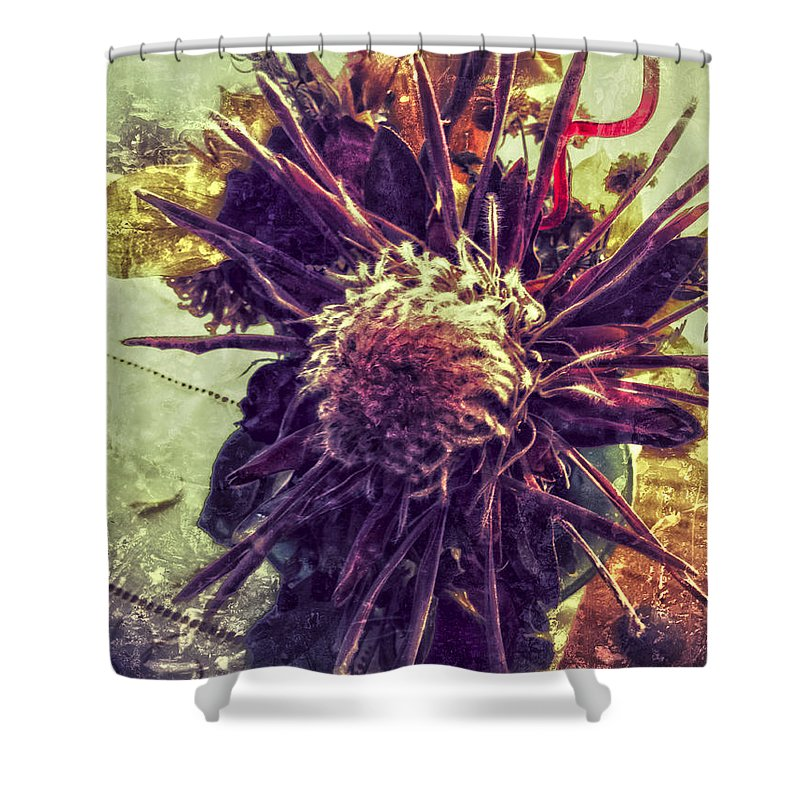 Jerry Cordeiro Photographs Framed Prints Framed Prints Photographs Shower Curtain featuring the photograph Dances Of Sun by The Artist Project