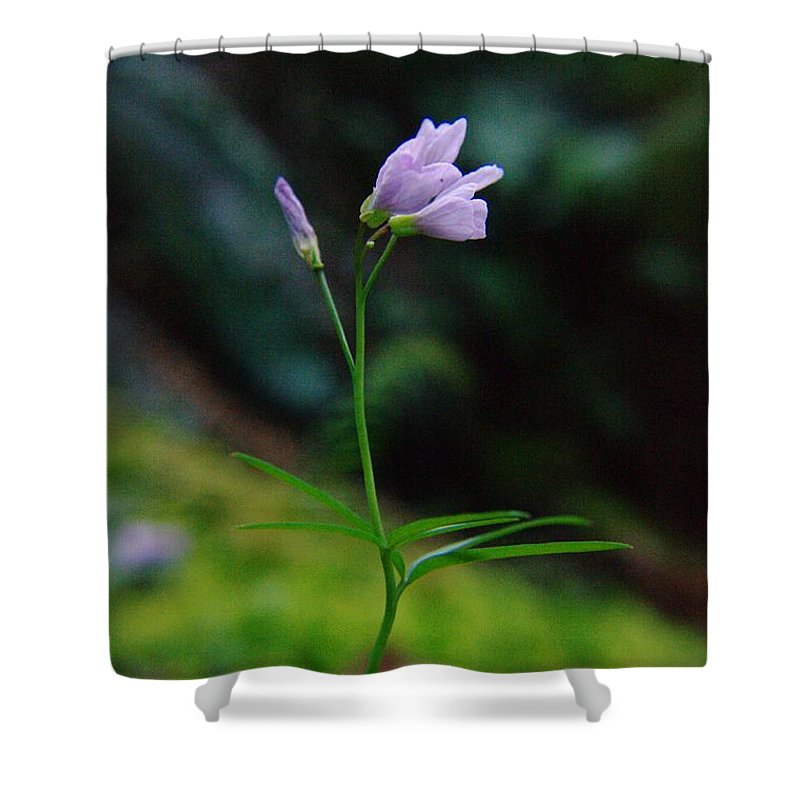 Flowers Shower Curtain featuring the photograph Dancing Flower by Jeff Swan