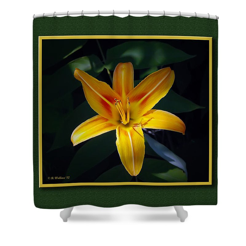 2d Shower Curtain featuring the photograph Day Lilly by Brian Wallace