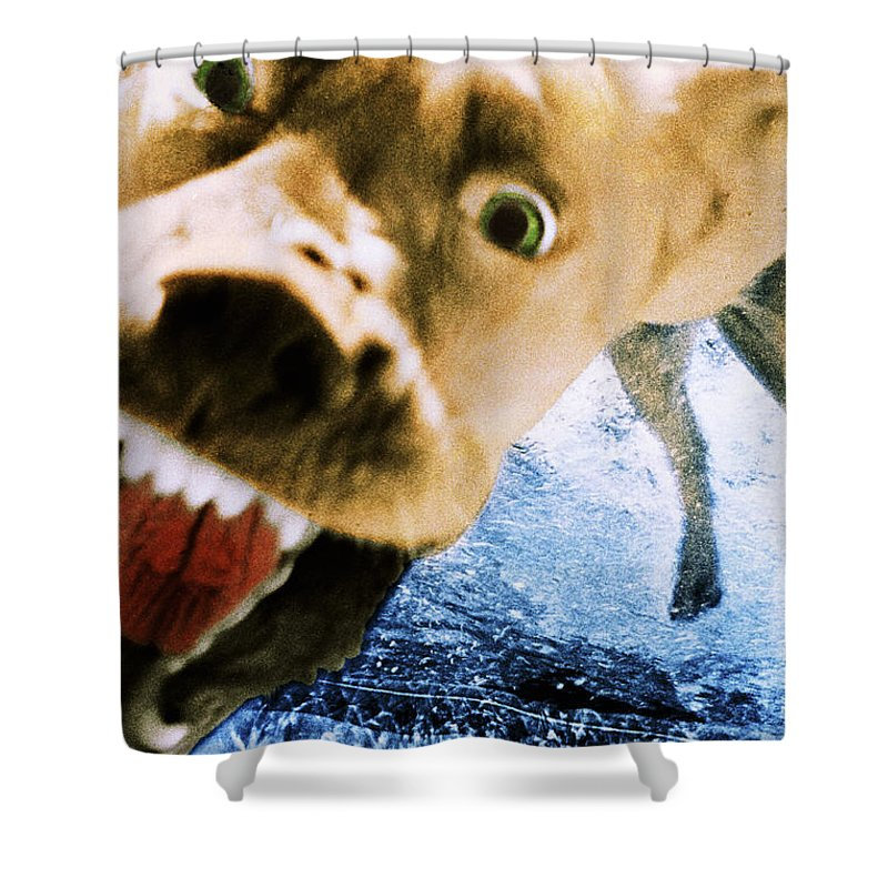 Dog Shower Curtain featuring the photograph Devil Dog by Jill Reger