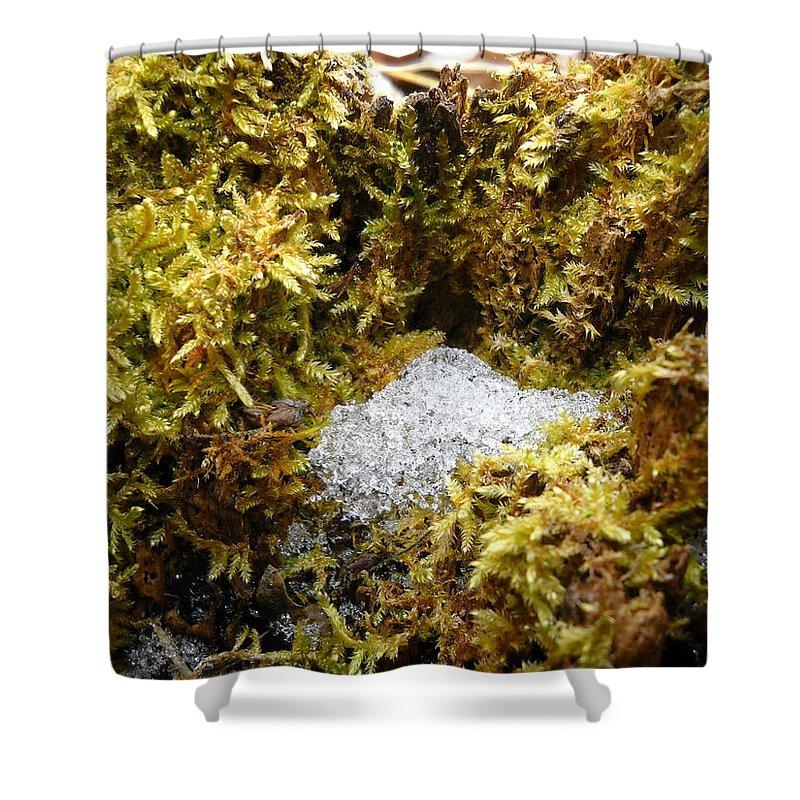 Dragon Nest Shower Curtain featuring the photograph Diamonds In A Dragon Nest by Kent Lorentzen