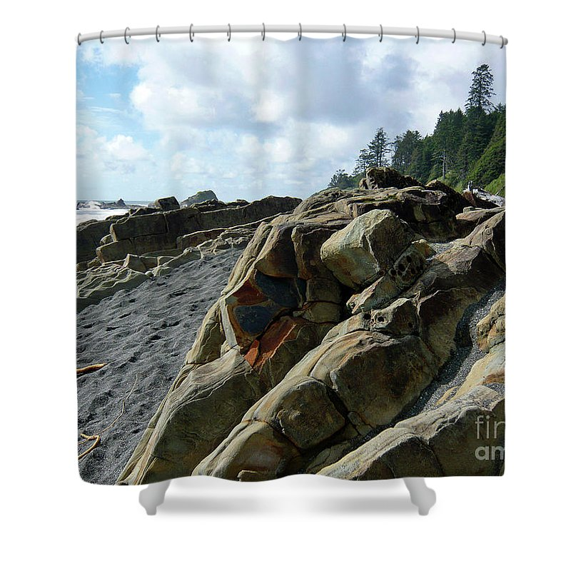 Seascape Shower Curtain featuring the photograph Dinosauer by Lauren Leigh Hunter Fine Art Photography