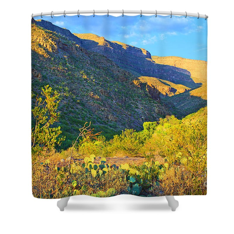 Roena King Shower Curtain featuring the photograph Dog Canyon Nm Oliver Lee Memorial State Park by Roena King