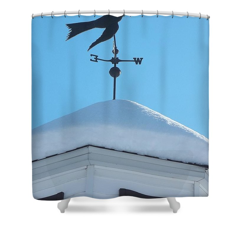 Dove Shower Curtain featuring the photograph Dove Weather Vane by Anne Cameron Cutri