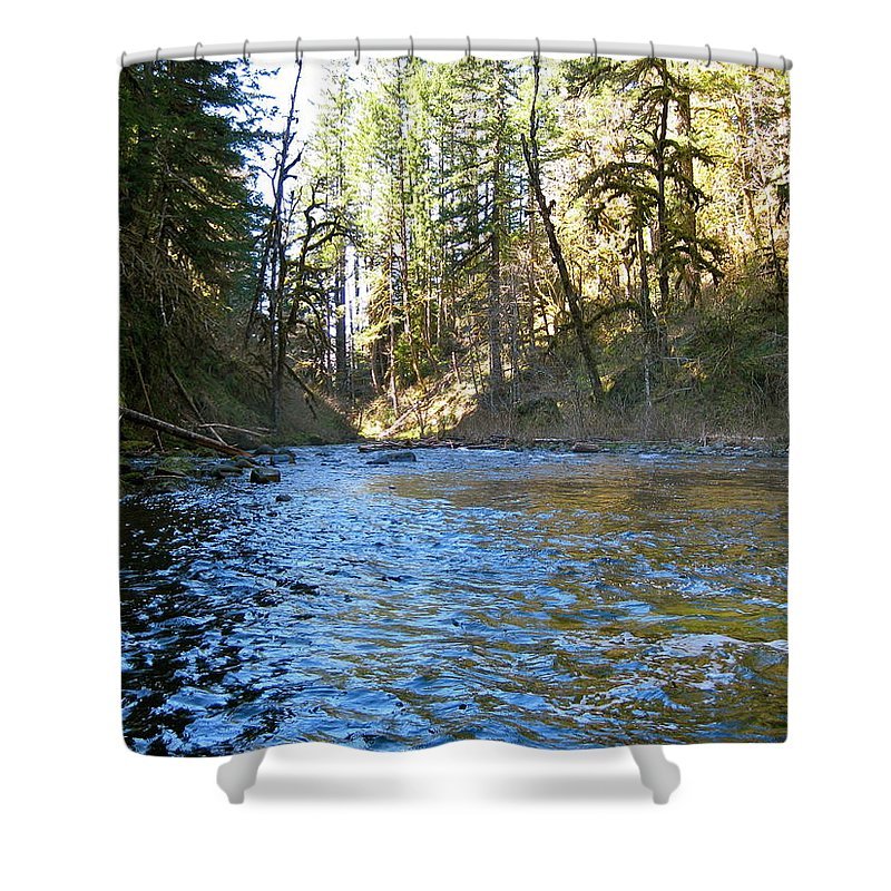 Down Stream Shower Curtain featuring the photograph Downstream by Linda Hutchins