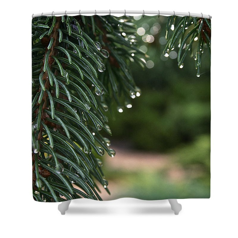 Outdoors Shower Curtain featuring the photograph Drip Dry by Susan Herber