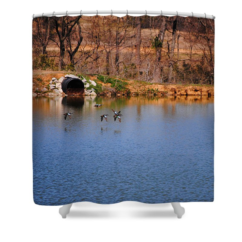 Ducks Shower Curtain featuring the photograph Ducks Flying Over Pond I by Jai Johnson