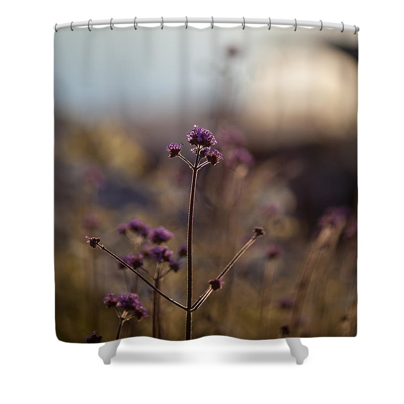 Flower Shower Curtain featuring the photograph Dusk Edges by Mike Reid