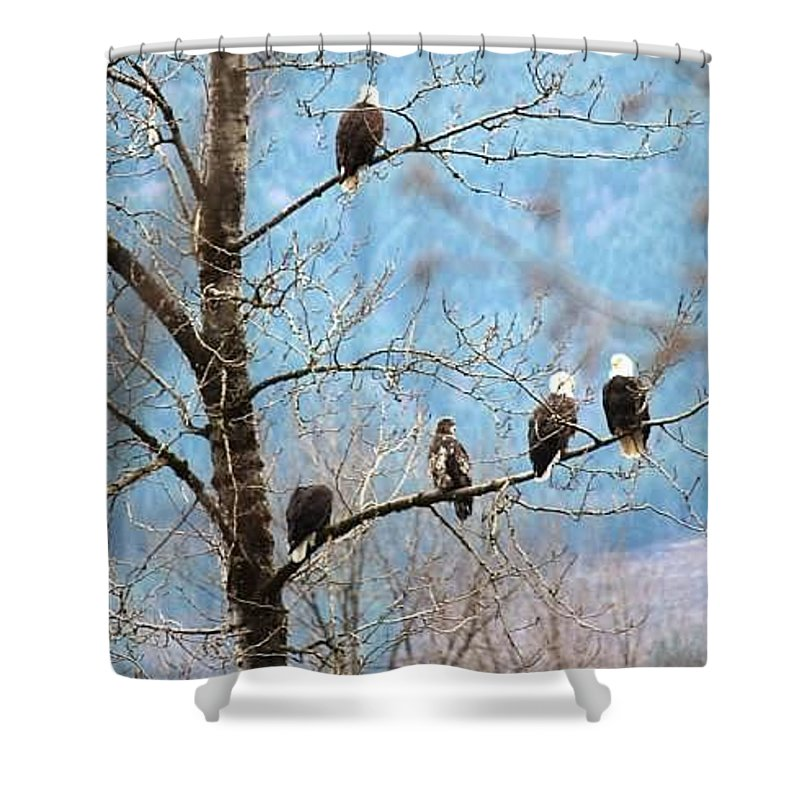 Landscapes Shower Curtain featuring the photograph Eagle Family by Shelley Aasland