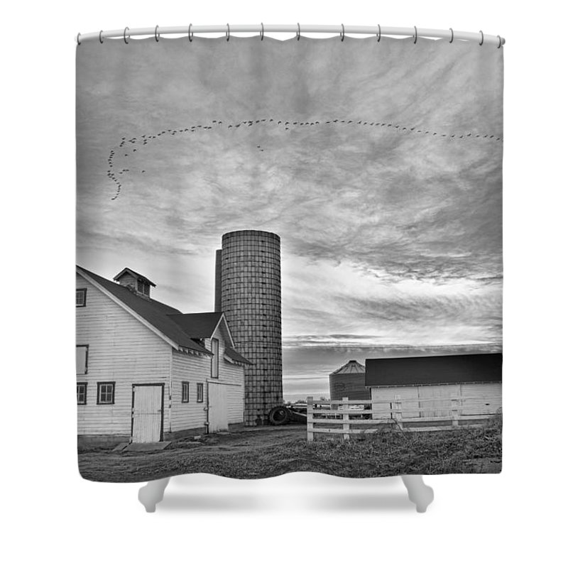 Barns Shower Curtain featuring the photograph Early Morning On The Farm Bw by James BO Insogna