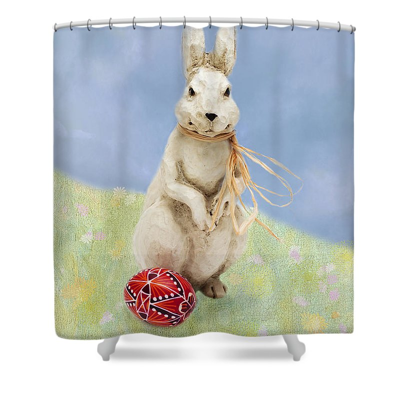 Easter Shower Curtain featuring the photograph Easter Bunny With A Painted Egg by Louise Heusinkveld