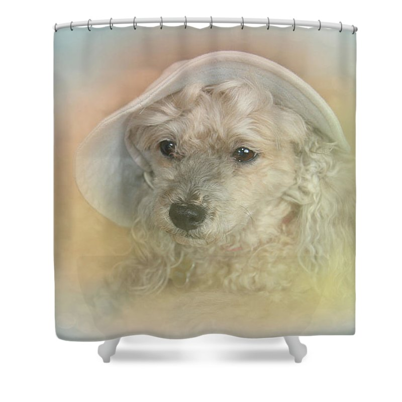 Emily Shower Curtain featuring the photograph Emily's Bonnet by Diana Haronis