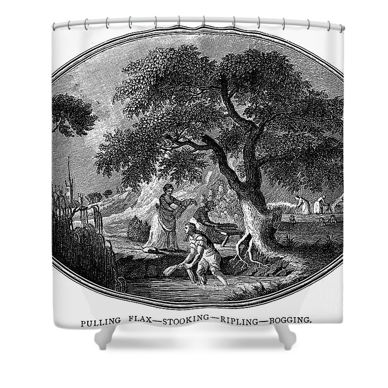 1800 Shower Curtain featuring the photograph England: Pulling Flax by Granger