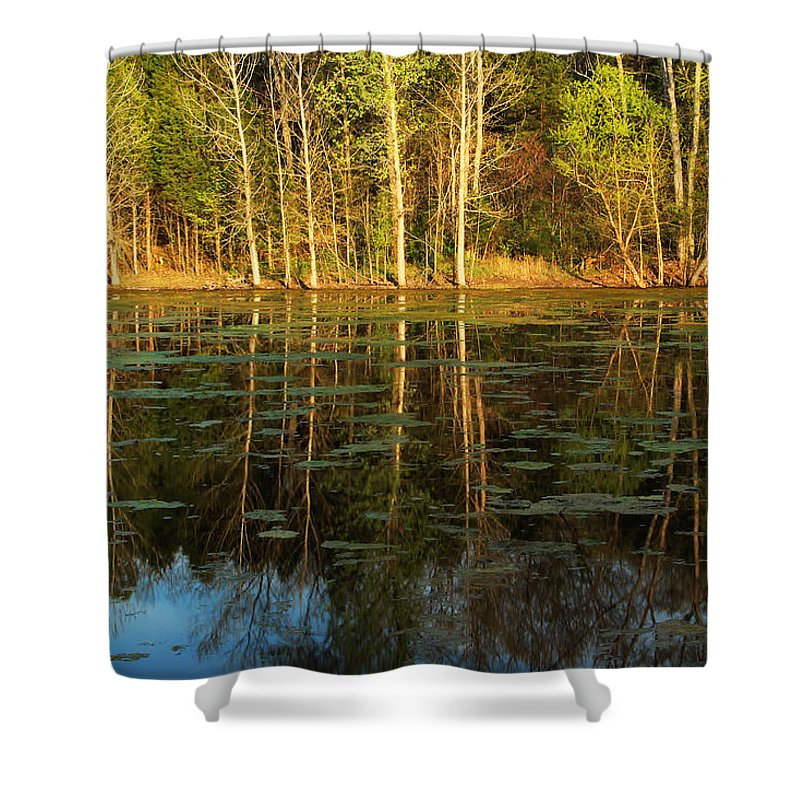 Pond Shower Curtain featuring the photograph Evening Light On A Missouri Pond I by Greg Matchick
