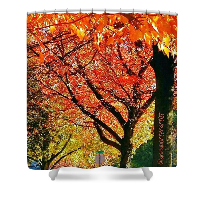 Fall Color Shower Curtain featuring the photograph Fall Color Nw Lovejoy And 22nd Street by Anna Porter