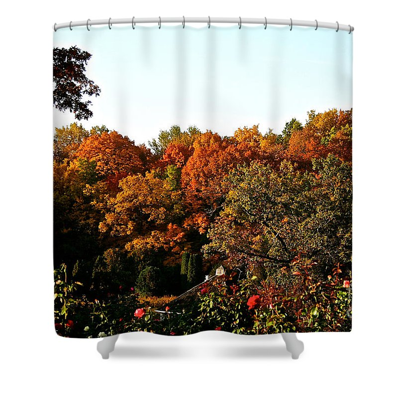 Outdoors Shower Curtain featuring the photograph Fall Foliage And Roses by Susan Herber