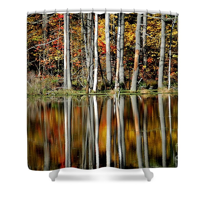 Fall Shower Curtain featuring the photograph Fall In New York by Mark Gilman