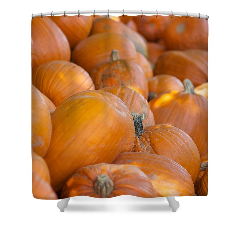 Pumpkin Shower Curtain featuring the photograph Fall Pumpkins by Brooke Roby