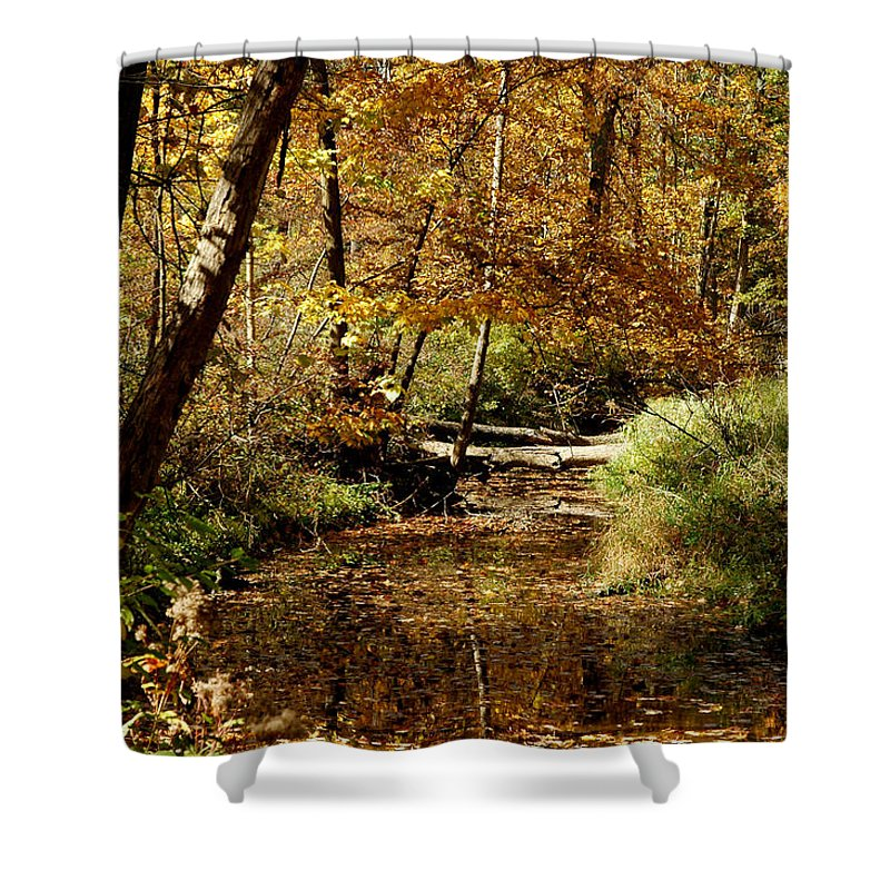 Landscapes Shower Curtain featuring the photograph Fall River Colors by LeeAnn McLaneGoetz McLaneGoetzStudioLLCcom