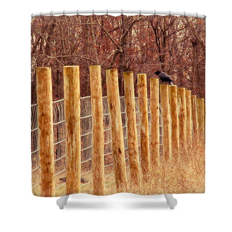 Farm Shower Curtain featuring the photograph Farm Fence And Birds by Jiayin Ma