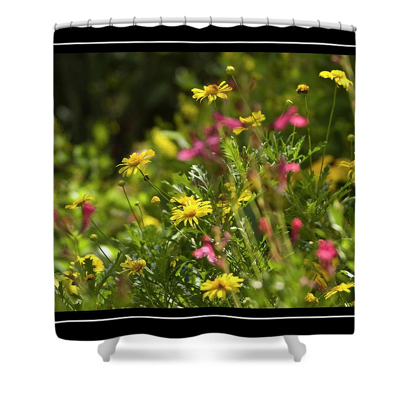 Field Of Wildflowers Shower Curtain featuring the photograph Field Of Wildflowers by Carolyn Marshall