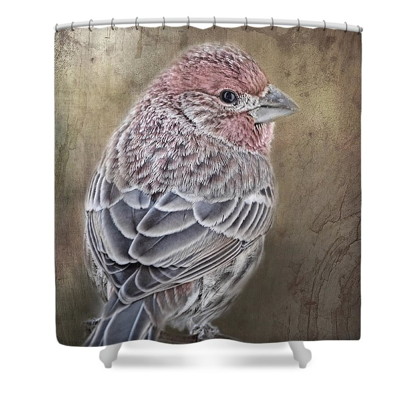Nature Shower Curtain featuring the photograph Finch Low Saturation by Debbie Portwood