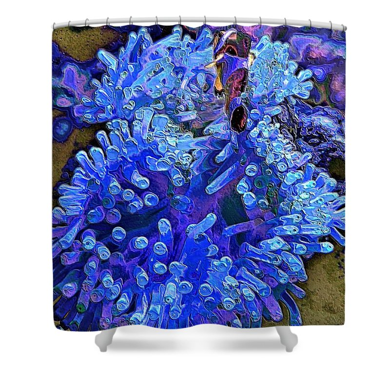 Fish Shower Curtain featuring the photograph Fishie And The Sea Anemone by Jenny Hudson
