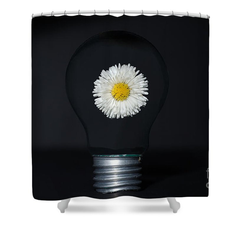Lamp Bulb Shower Curtain featuring the photograph Flower Inside A Lamp Bulb by Mats Silvan
