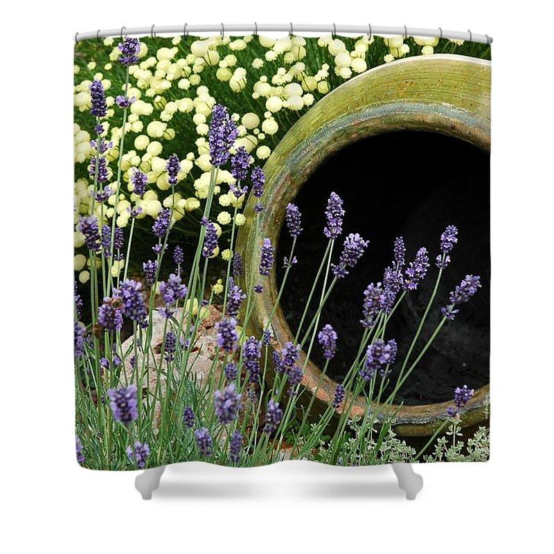 Flower Pots Shower Curtain featuring the photograph Flower Pot 5 by Allen Beatty