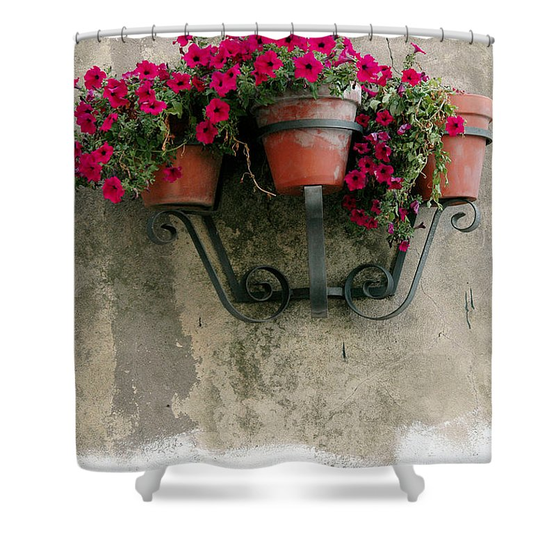 Flower Shower Curtain featuring the photograph Flower Pots On Old Wall by Mike Nellums