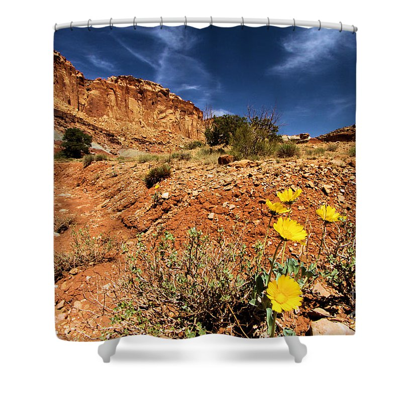 Capitol Reef National Park Shower Curtain featuring the photograph Flowers And Canyons by Adam Jewell