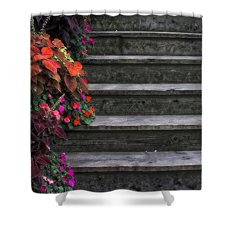 In Focus Shower Curtain featuring the photograph Flowers And Steps by Joanne Coyle