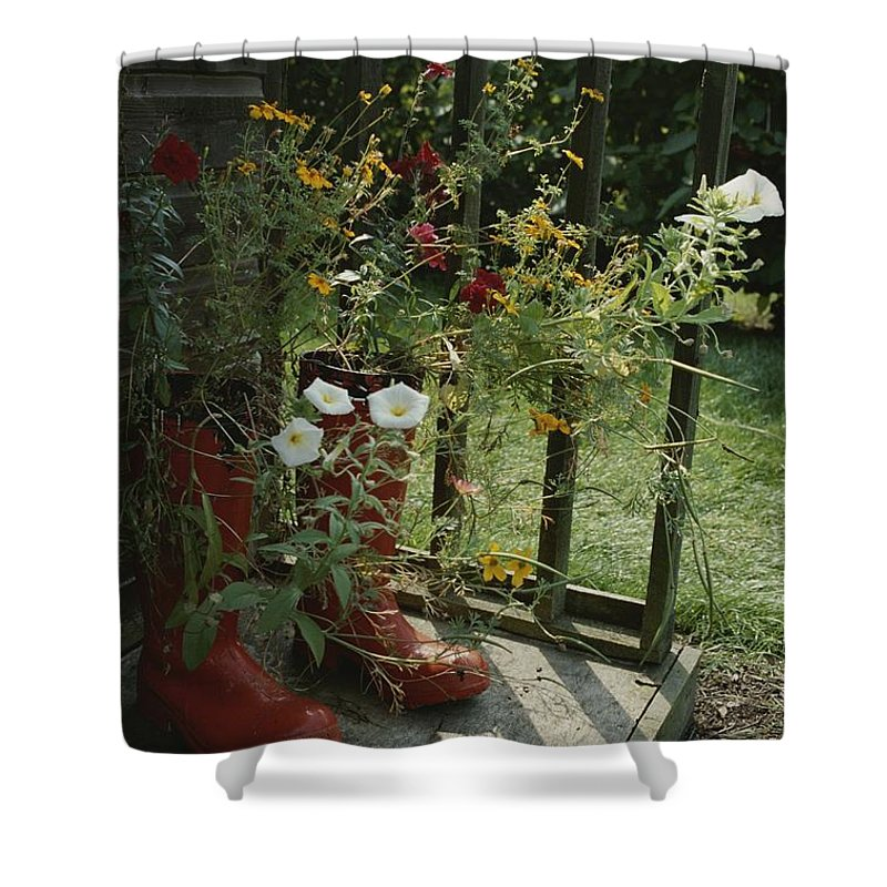 Europe Shower Curtain featuring the photograph Flowers Bloom From An Unlikely Place-a by Jonathan Blair