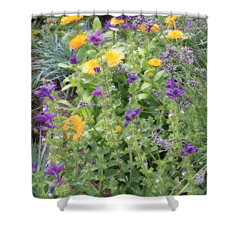 Flowers Shower Curtain featuring the photograph Flowers In Charlottenburg Palace Garden by Carol Groenen