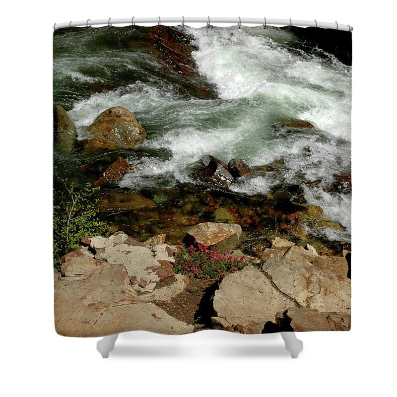 Usa Shower Curtain featuring the photograph Flowers On The Edge Glen Alpine Creek by LeeAnn McLaneGoetz McLaneGoetzStudioLLCcom