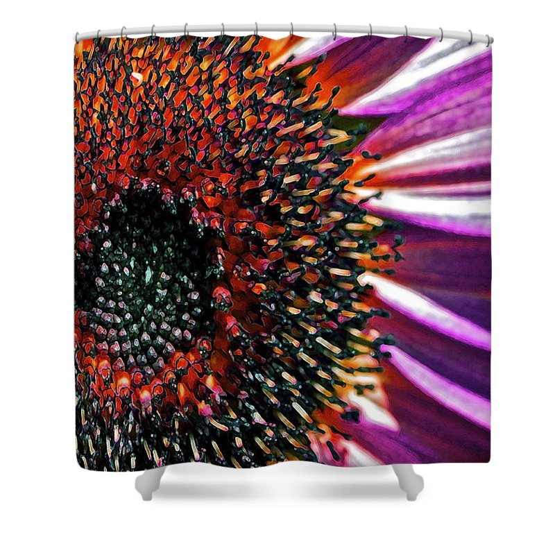 Sunflower Shower Curtain featuring the photograph For Ana by Gwyn Newcombe