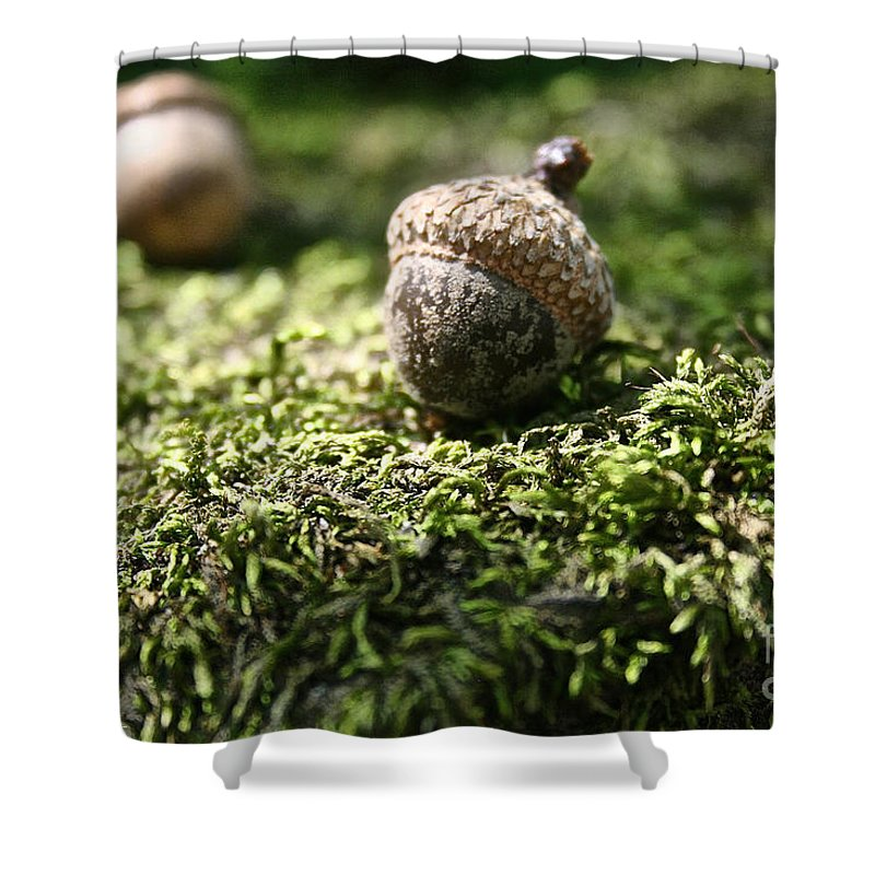 Outdoors Shower Curtain featuring the photograph Found by Susan Herber