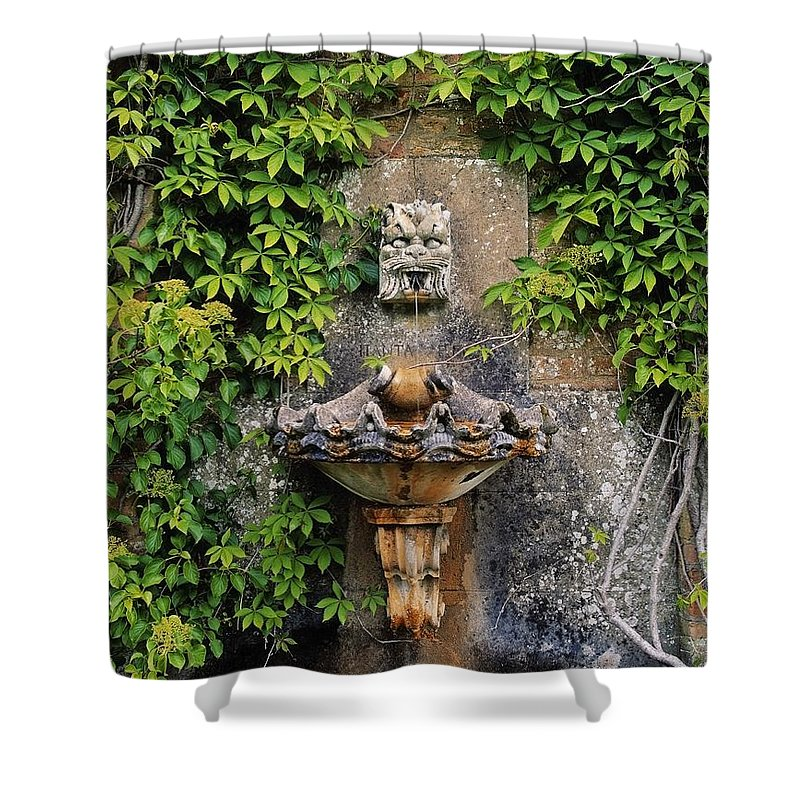 Climbers Shower Curtain featuring the photograph Fountain In The Walled Garden, Florence by The Irish Image Collection