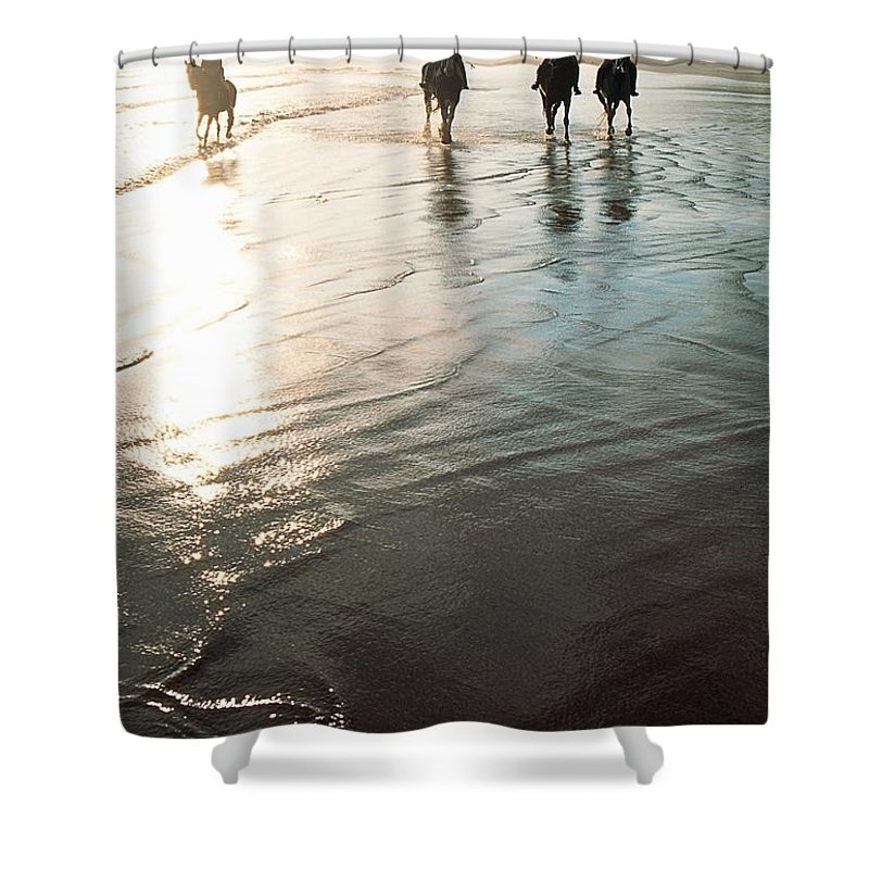 Day Shower Curtain featuring the photograph Four People Horseback Riding On A by The Irish Image Collection