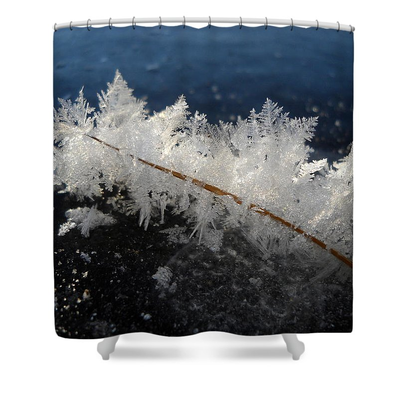 Fractals Shower Curtain featuring the photograph Fractal Frosty Ice Crystals by Kent Lorentzen