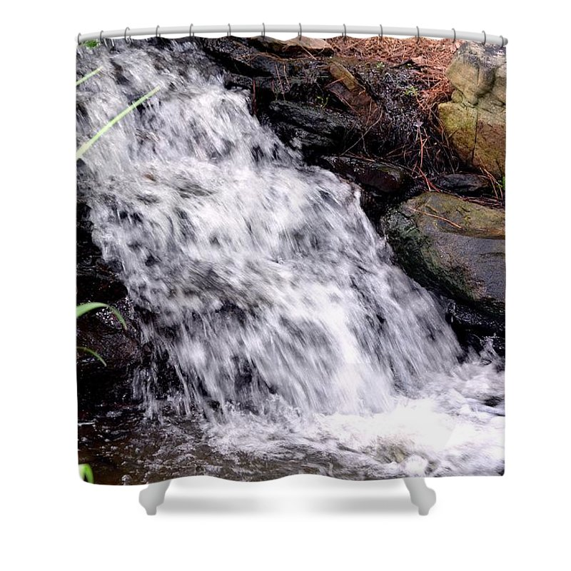 Free Shower Curtain featuring the photograph Free Fallen by Maria Urso