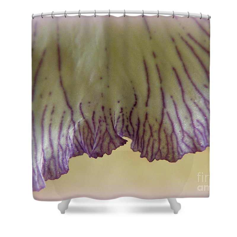 Iris Shower Curtain featuring the photograph Fringe by Lainie Wrightson