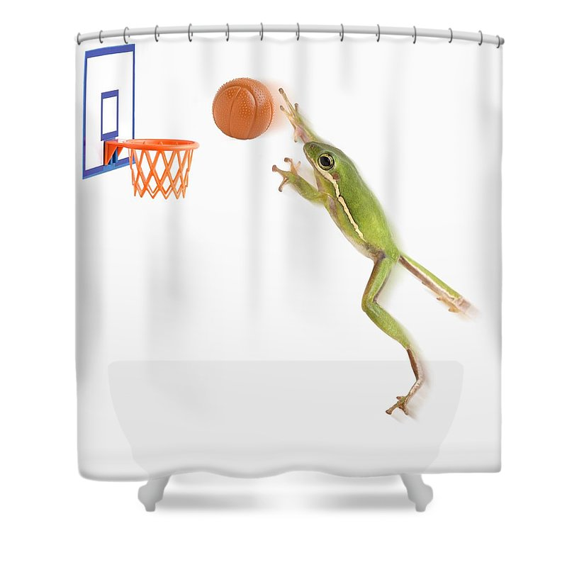 Animal Shower Curtain Featuring The Photograph Frog Playing Basketball By Corey Hochachka