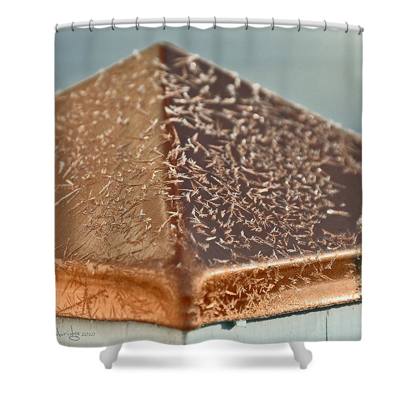 Frost Shower Curtain featuring the photograph Frost On Copper Newel by Christine Stonebridge