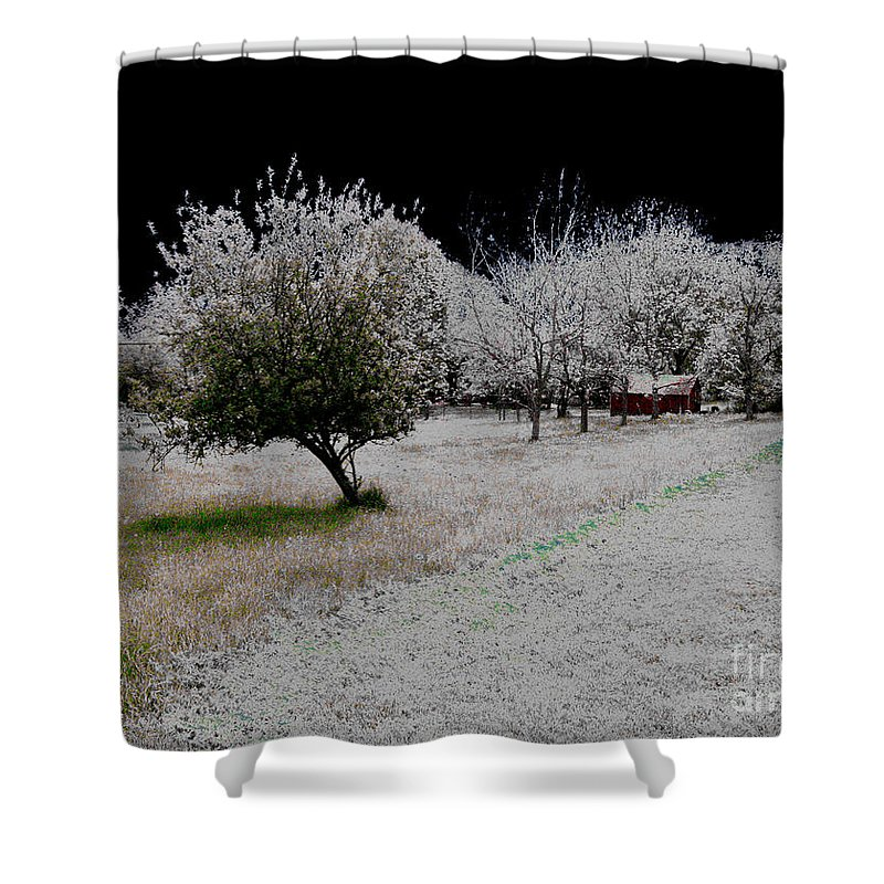 Evening Shower Curtain featuring the photograph Frozen by Cindy Roesinger
