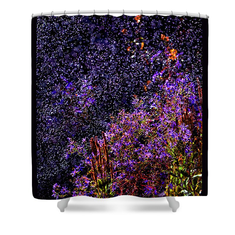 Asters In Rain Shower Curtain featuring the photograph Galactic Gardens by Susanne Still