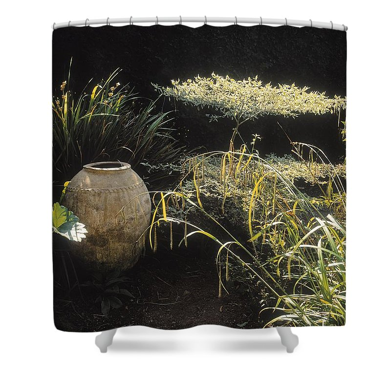 Outdoors Shower Curtain featuring the photograph Garden Urns In A Garden by The Irish Image Collection