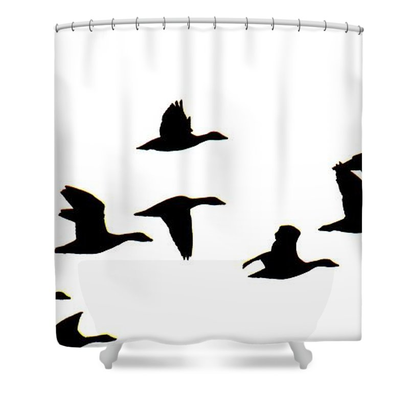 Geese Shower Curtain featuring the photograph Geese in Flight Silhouette by Rrrose Pix